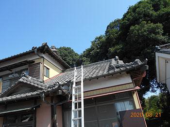 20201106_Ssama_chu01.jpg