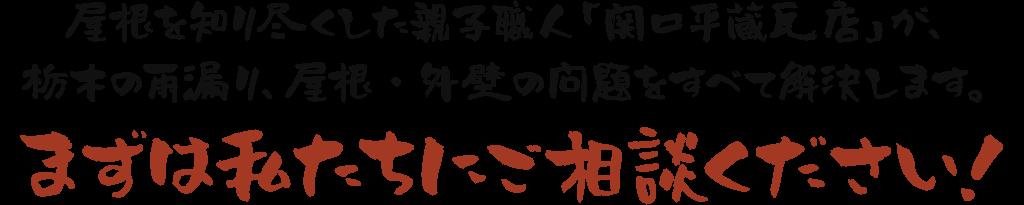 屋根を知り尽くした親子職人「関口平蔵瓦店」が、栃木県の雨漏り、屋根・外壁の問題をすべて解決します。まずは私たちにご相談ください!